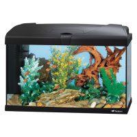 CAPRI 60 LED BLACK – аквариум 60л. , черен-60×31.5×39.5 см.