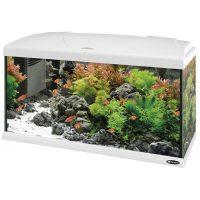 CAPRI 80 WHITE – аквариум 100л., бял- 80×31.5×46.5 см.