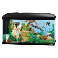 CAPRI 80 LED BLACK – аквариум 100л., черен-80×31.5×46.5 см.
