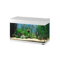DUBAI 80 WHITE – аквариум 125л, 81х36х51 см, бял