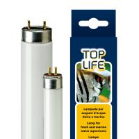 AQUASKY / TOPLIFE 8W T5 -2 9см лампа за аквариум
