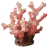 BLU 9133 – червен корал 14х14х13см