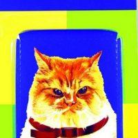 ППК за котки – билкова (111)