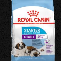 ROYAL CANIN® GIANT STARTER 15kg