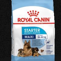 ROYAL CANIN® MAXI STARTER 15kg