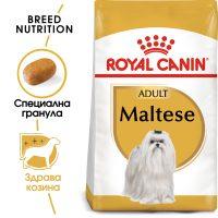 ROYAL CANIN® MALTESE ADULT 1.5kg