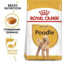 ROYAL CANIN® POODLE 1.5kg