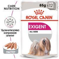 ROYAL CANIN® EXIGENT LOAF 12x85g