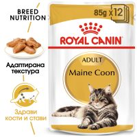 ROYAL CANIN® MAINECOON POUCH 12x85g