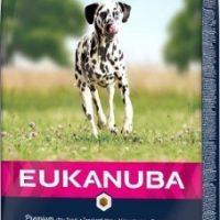 EUK DOG AD LARGE SALMON 12-12 кг
