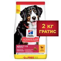 Hill's 604364/604373P SP Dog Adult Large Breed L&R агнешко&ориз куче – Пълноценна храна за кучета от едри породи над 25 кг с умерени енергийни нужди, 1 – 6 г.  – 12kg+2kg