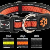 GimDog нашийник за кучета Alfresco, размер M – в различни цветове